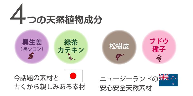 黒生姜・緑茶カテキン・松樹皮・ブドウ種子の4つのポリフェノール配合!カルテノールは若さを支えるサプリメントです。