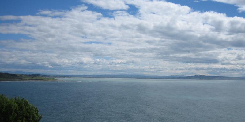 アラワエキスは、ニュージーランドの綺麗な海で育った深海鮫の肝油サプリメントです。